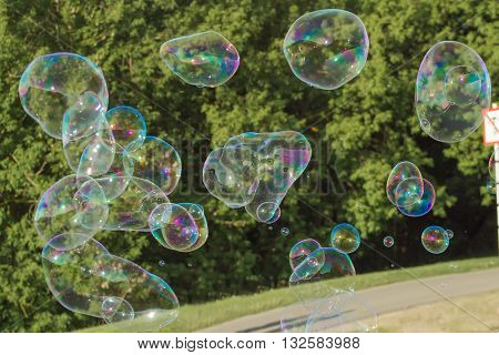 Many Soap Bubbles In Nature