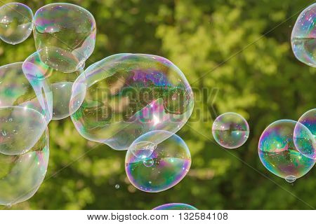 Bubbles In Nature