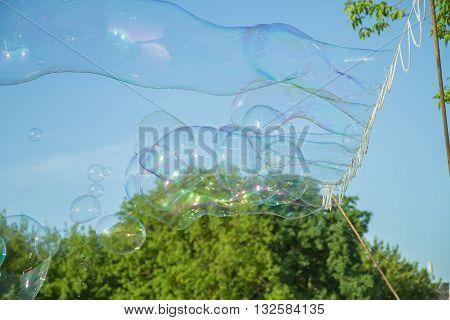 Soap Bubbles In Air