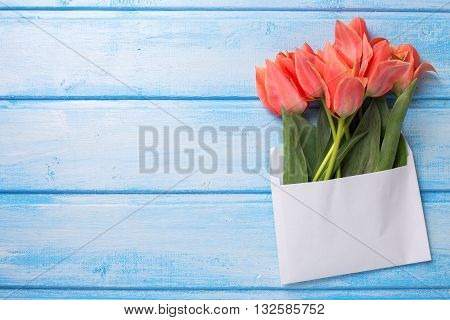 Flat lay floral still life photo. Coral tulips in white envelope on blue wooden background. Selective focus. Place for text.