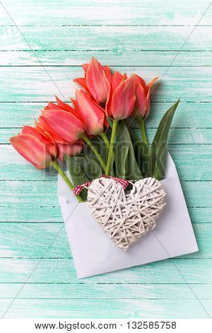Spring tulips in white envelope and heart on turquoise painted wooden background. Selective focus. Flat lay.