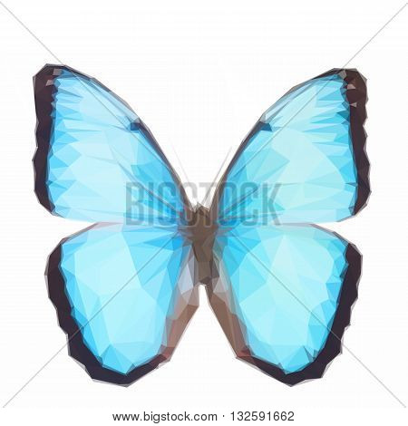 Low poly illustration of Blue morpho butterfly