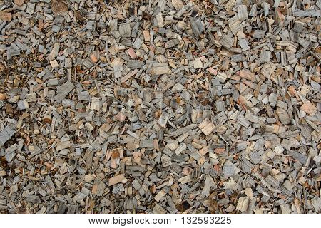 Textured background of a new wood shavings