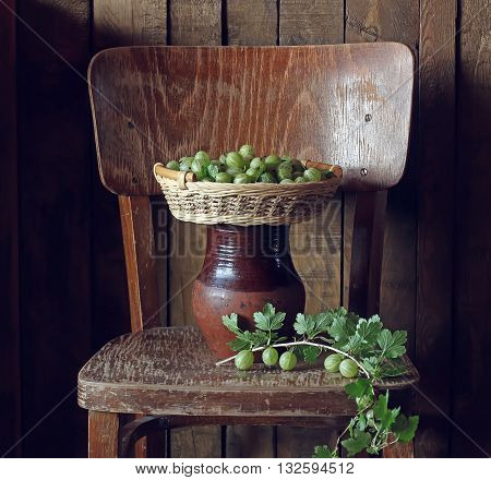 Green gooseberries in a basket on the chair. Still life with gooseberries on the background boards.