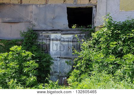 Overgrown gate of the abandoned house in Bulgaria