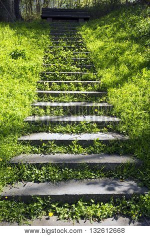 The staircase leading up to a bench - Green Spring in Denmark