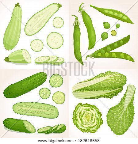 Set of green vegetables. Vector illustration. Collection of cabbage peas cucumber and zucchini. Healthy food.