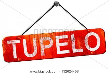 tupelo, 3D rendering, a red hanging sign