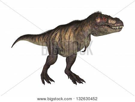 3D Rendering Dinosaur Tyrannosaurus On White