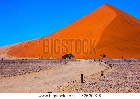 The most famous is  huge orange dune 45.  Travel to Namibia. Namib-Naukluft National Park