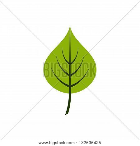 Cartoon style linden leaf vector illustration isolated on white background.