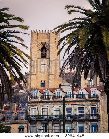 Church tower in Lisbon framed by palm trees