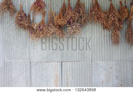 Several of dry flowers hanging on the zinc wall background