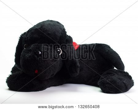 Stuffed black dog Put on a white background.