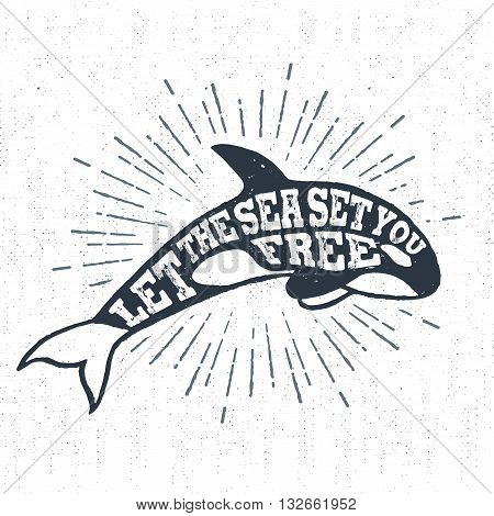 Hand drawn textured vintage label retro badge with killer whale vector illustration and