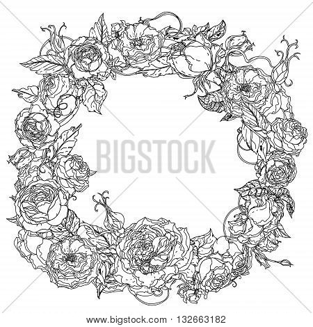 Uncolored colouring book style  roses frame in zenart style, could be used for Adult colouring book. Hand-drawn, doodle, vector the best for your design, wedding cards, coloring book. Black and white.