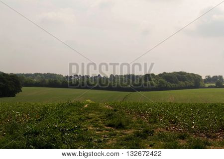 View Over The Chilterns Landscape In Buckinghamshire, England