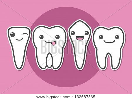 Tooth types. Kinds of teeth. Dental vector illustration
