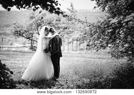Bride Hugging Groom Head. Amazing Wedding Couple At Park, B&w Photo