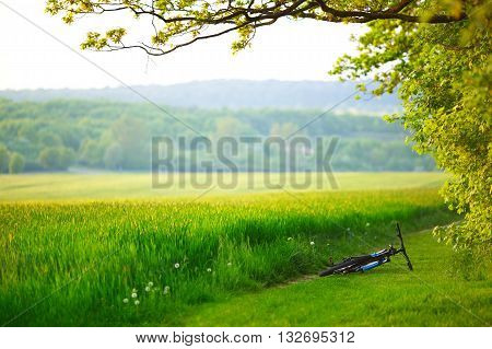 Mountain bike laying near the field or meadow. Offroad cycling.