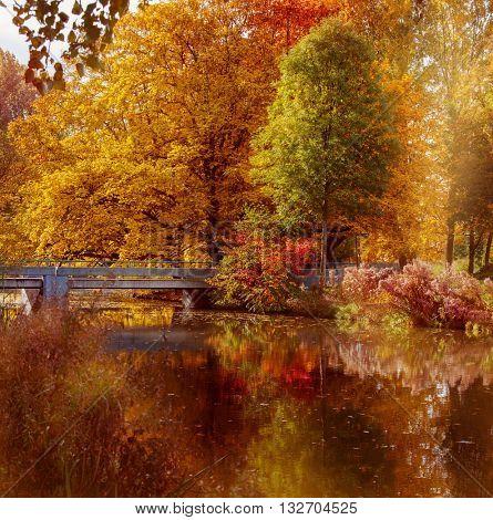 Iron bridge in a park. Autumn in Amsterdam, the Netherlands