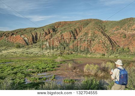 senior hiker at Colorado foothills  - Red Mountain Open Space in northern Colorado near Fort Collins, early summer scenery