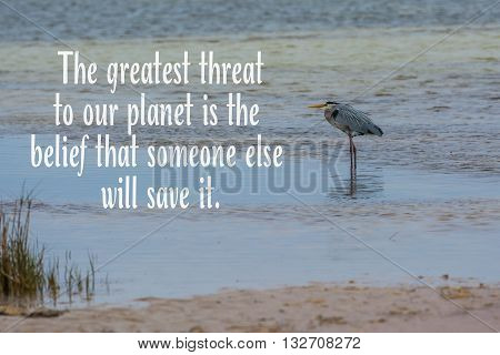 Blue heron relaxes on a beach with inspirational quote about taking care of our planet