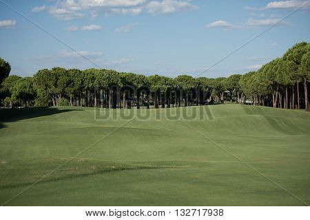 golf course landscape at beautiful fresh morning  sunrise