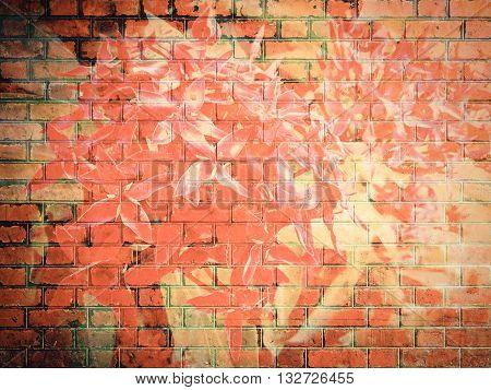 Ixora Flower On Red Brick Wall Texture