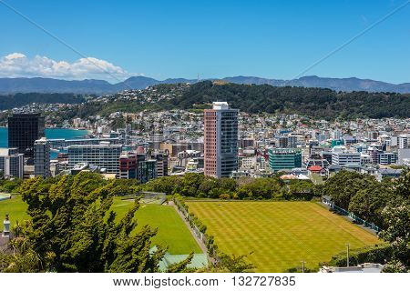 View of Mt Victoria over Wellington CBD capital city of New Zealand. Modern architecture and Cricket Field in the foreground.