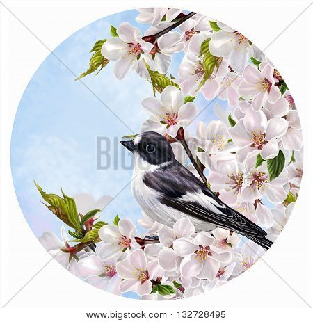 Round form. Black little bird on a branch of a blossoming pink almond in spring. Circle.