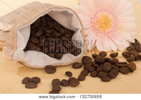 Pouch of coffee grains on caramel background decorated with pink gerbera flower