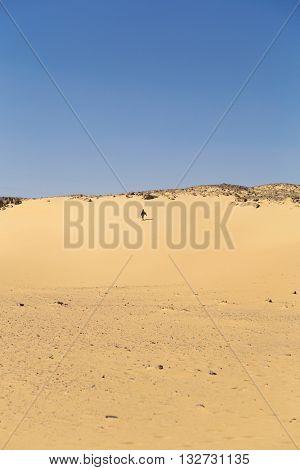 Nubian man wearing traditional clothing walking in sandy desert.