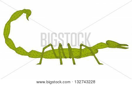 Vector illustration of polygonal scorpion. Isolated. 3D.