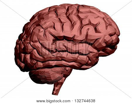Vector illustration of a brain. Polygon. Isolated.