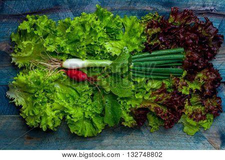 Fresh Salad Scallion And Radish