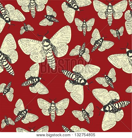 Hand drawn  seamless Butterflys ,Pattern  - vector background