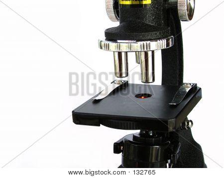 Microscope Light