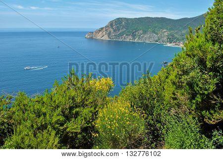 Panoramic landscape in the Cinque Terre area