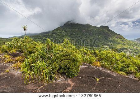 Mount Copolia, Mahe, Seychelles