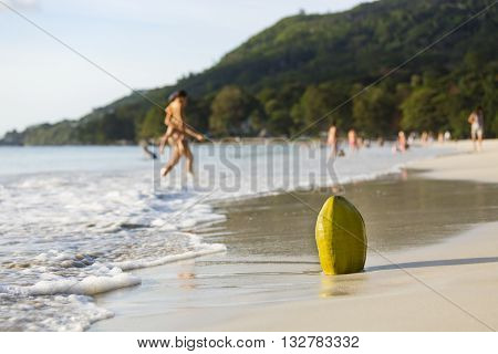 Coconut And People On The Beach, Mahe, Seychelles