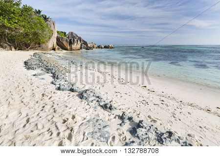 Old Coral Rock At Beach, Seychelles