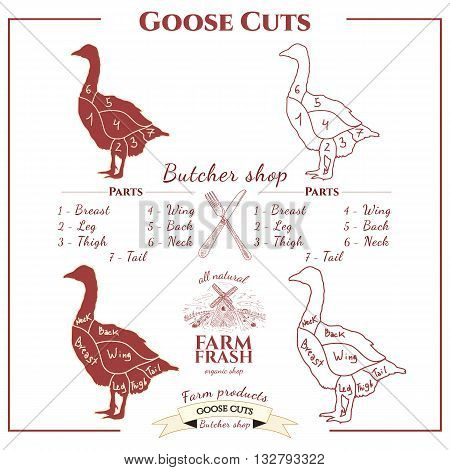 Goose cuts vector set coolection goose vector
