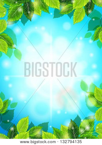 Bright Spring realistic background blue sky green leaves. The sun's rays glare glow. Template for web design. Vector illustration