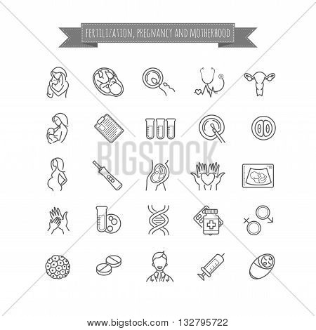 Vector set of fertilization, pregnancy and motherhood  icons. Gynecology, childbirth healthcare thin line symbols for web design, layout, etc.