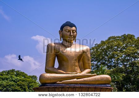Buddha statue against blue sky in Colombo Sri Lanka with flying bird on background and green trees