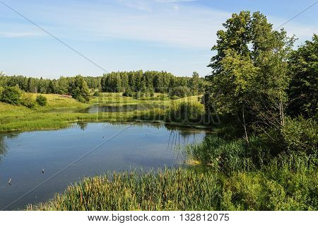 Country landscape with small forest lake in summer time
