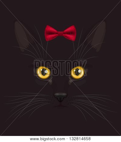Muzzle of short-haired black cat with big yellow eyes and with stylish red bow on head top, at dark background