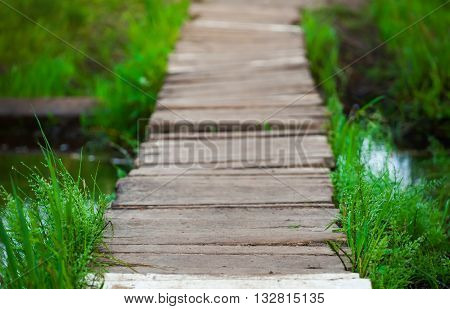 wooden bridge over a stream in the woods