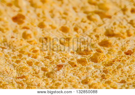 a sponge texture macro as a background